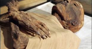 misir-da-firavun-mumyasi-bulundu-5142204_395_o